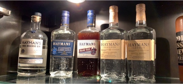 Hayman's Gin selections